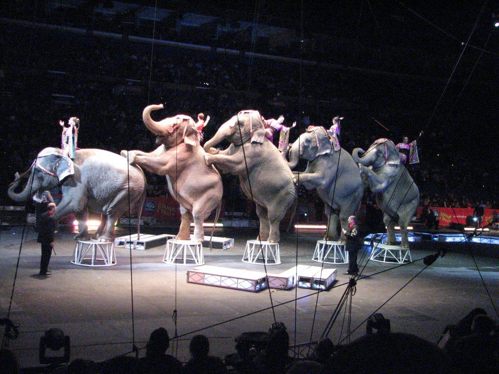 В США закрывается один из старейших классических цирков