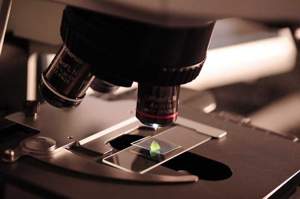 Микроскоп, научные исследования