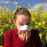 Аллергия \ pixabay.com