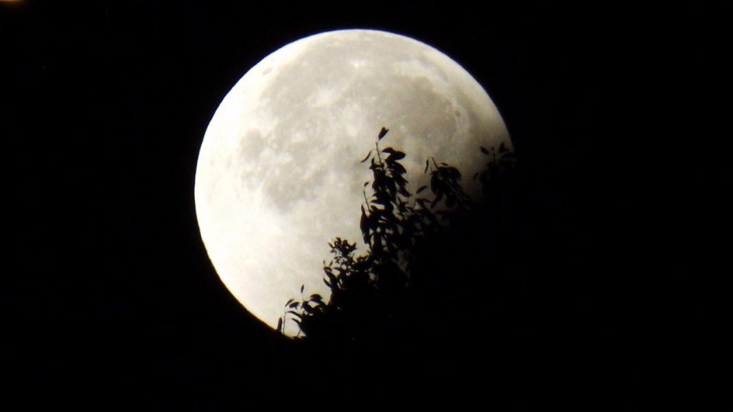 Луна \ pixabay.com