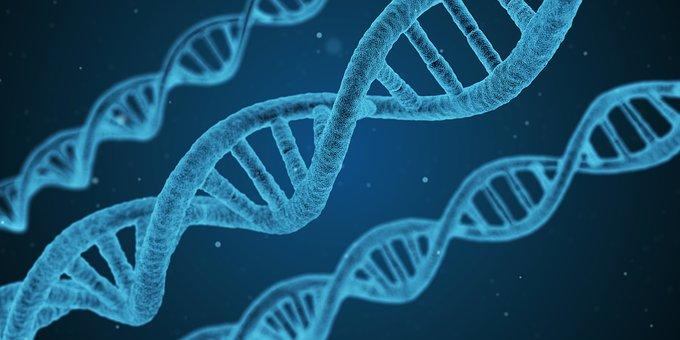 В России выявили регион с аномально высоким уровнем генетической болезни