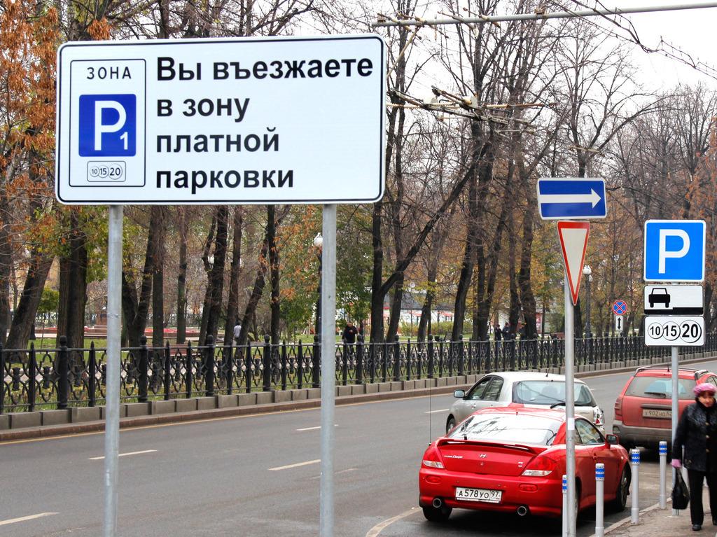 Воронежцы протестуют против платных парковок вцентре города (СХЕМА)