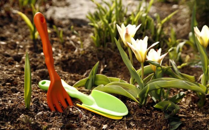Ученые: десятиминутная работа в саду защитит от рака и инсульта