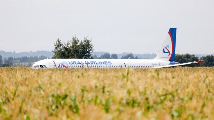 С кукурузного поля в Московской области вывезли все части самолета Airbus A321